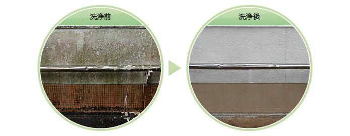 外壁のカビ・コケ除去洗浄