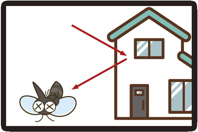 外壁や窓ガラスに飛来した虫の駆除・侵入防止